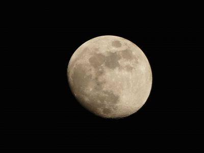 Mond-Jahreshoroskop-Varshphala